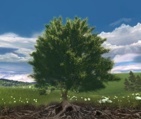 Interface image showing a tree in a field